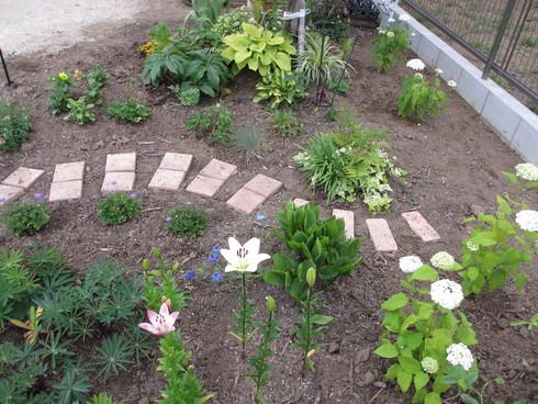 レンガ花壇横に新しいコーナーをつくりました_a0243064_1824028.jpg