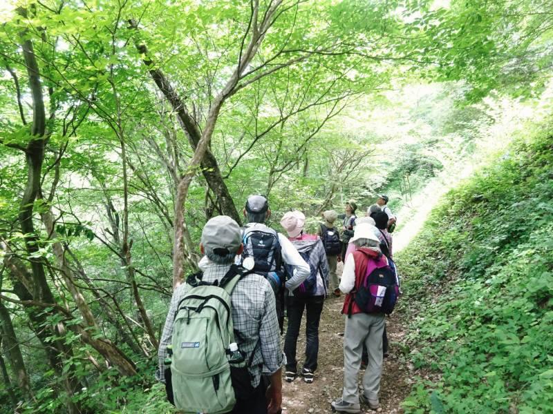 御岳山自然観察会_f0059673_22354787.jpg