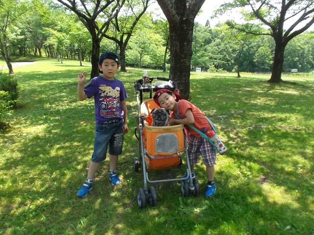 孫たちと広い公園へ_f0019498_20382338.jpg