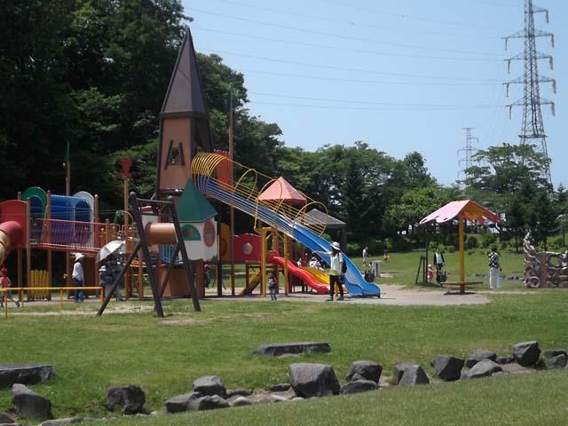 孫たちと広い公園へ_f0019498_2039529.jpg