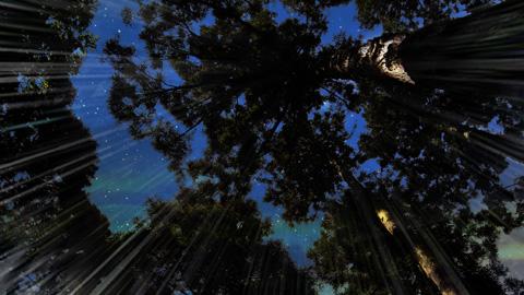 ★『絵巻水滸伝』WEB版  第二部 予告編★_b0145843_19411158.jpg