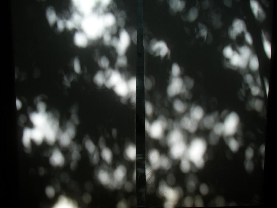 f0202518_9414385.jpg