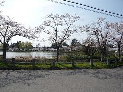 お散歩_c0369433_15495630.jpg