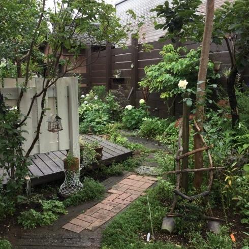 雨の休日・・・ちょっぴり遠出・・_b0137969_06091118.jpeg