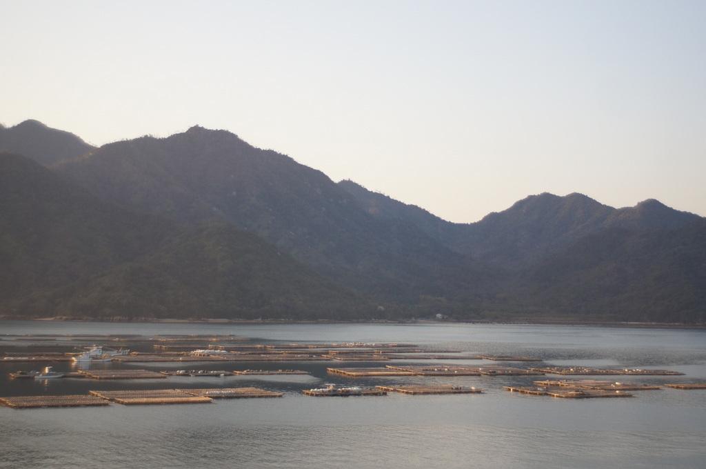 広島、厳島へ。_c0180686_14012480.jpg