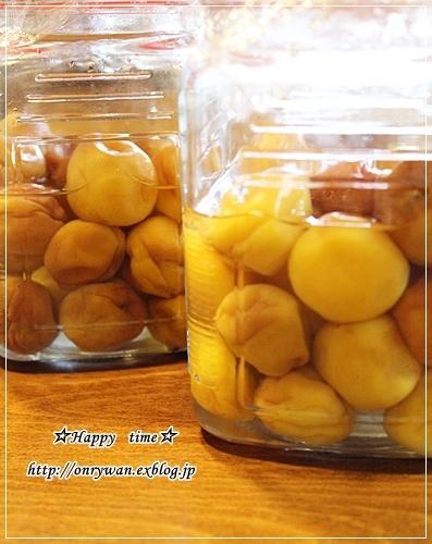 椎茸つくねの照焼き弁当と梅シゴト②♪_f0348032_17555043.jpg