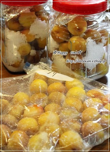 椎茸つくねの照焼き弁当と梅シゴト②♪_f0348032_17560939.jpg