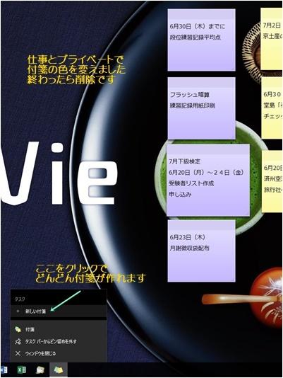 パソコンのカスタマイズ&ビデオテープの整理&アナベルの挿し木_a0084343_13410699.jpg