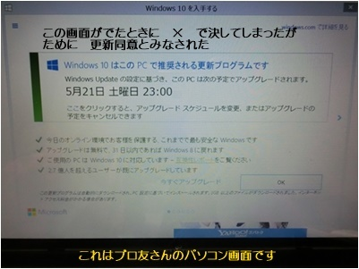 パソコンのカスタマイズ&ビデオテープの整理&アナベルの挿し木_a0084343_13542395.jpg