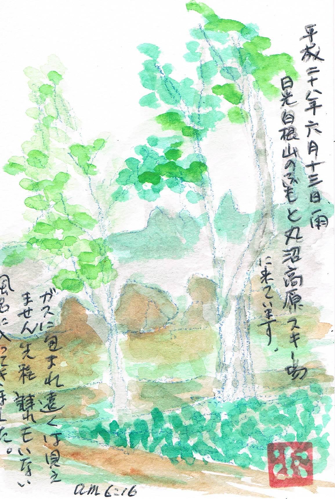 雨の日光白根山_e0232277_112382.jpg