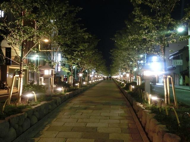 初めての鎌倉  鶴岡八幡宮の参道「若宮大路」とにぎわう「小町通り」_f0141310_7113334.jpg