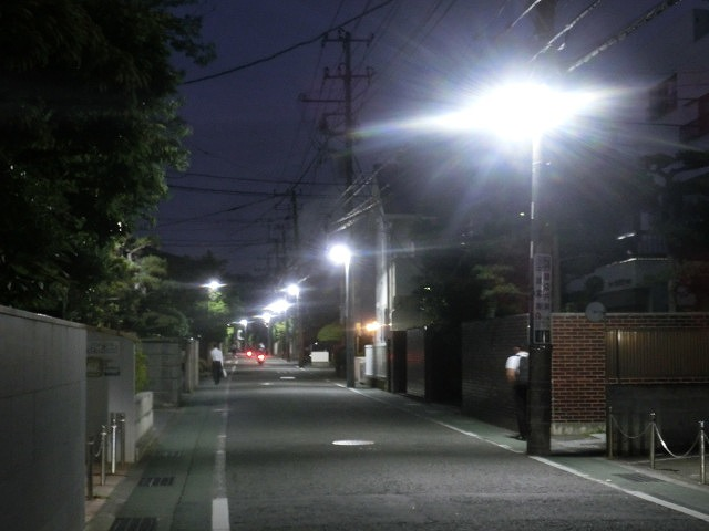 初めての鎌倉  鶴岡八幡宮の参道「若宮大路」とにぎわう「小町通り」_f0141310_7122271.jpg