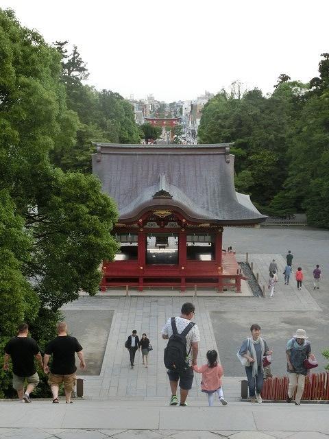 初めての鎌倉  鶴岡八幡宮の参道「若宮大路」とにぎわう「小町通り」_f0141310_77834.jpg