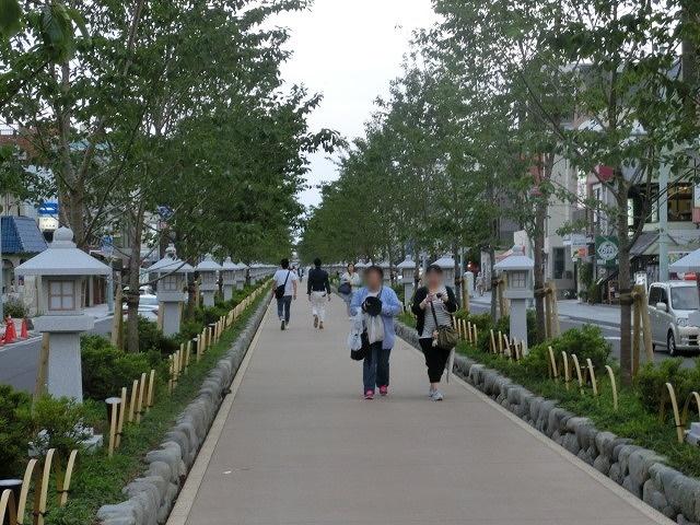 初めての鎌倉  鶴岡八幡宮の参道「若宮大路」とにぎわう「小町通り」_f0141310_794719.jpg