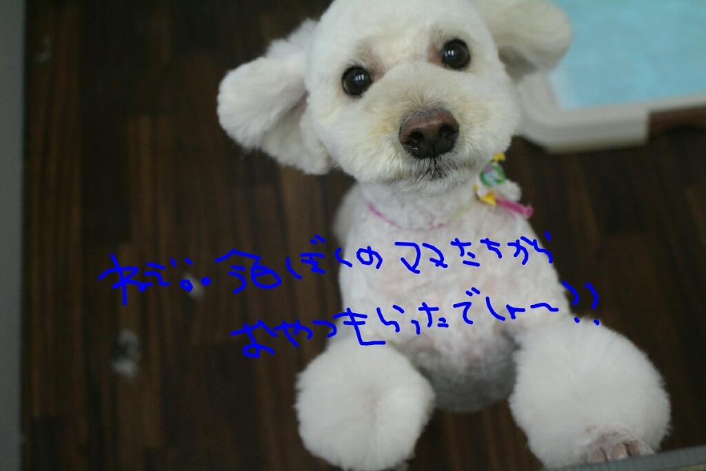 b0130018_09475490.jpg