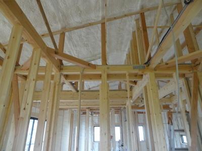 NEW モデルハウス もう少しで構想が決まりそう?_a0084859_12225234.jpg