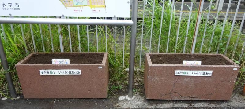 小川駅西口プランター花植替え_f0059673_23090736.jpg