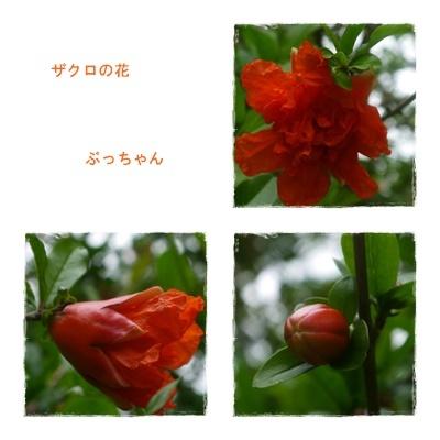 f0353990_09112962.jpg