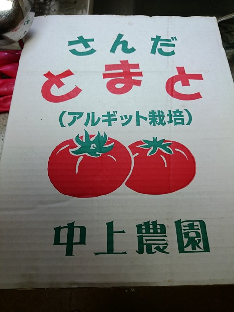 アルギット栽培_e0167593_10068.jpg