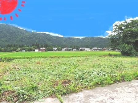 南魚沼(新潟)で田舎暮らし_a0128408_101141.jpg