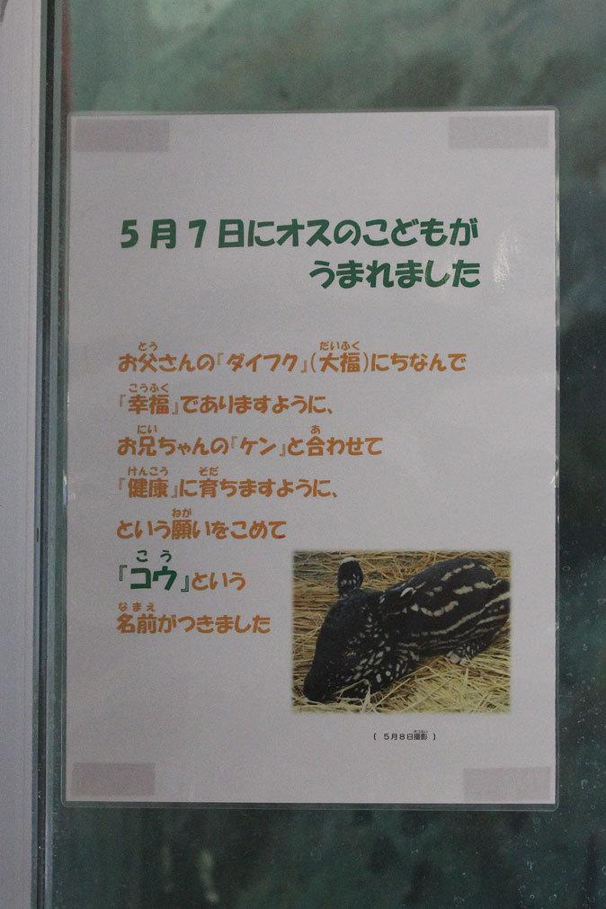 b0355317_17394878.jpg