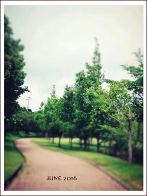 お散歩_c0245240_21345629.jpg