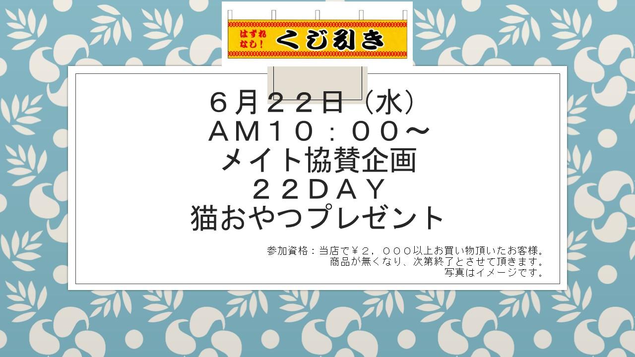 160617 22DAYイベント告知_e0181866_1014763.jpg