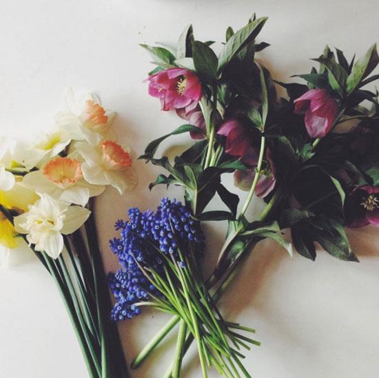 5月 収穫と開花記録_f0032814_17173386.jpg