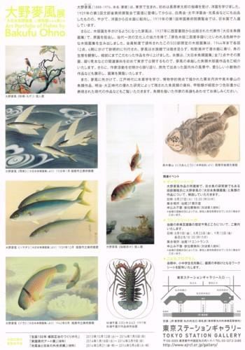 大野麥風展「大日本魚類図譜」と博物画にみる魚たち_f0364509_20474204.jpg
