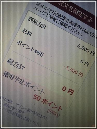 b0289710_16253087.jpg