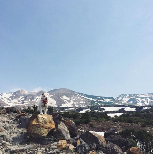 山へ_f0032814_11264928.jpg