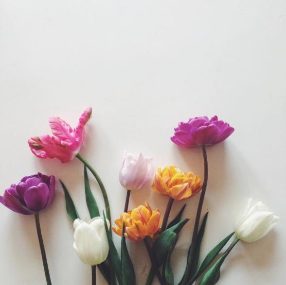 花が咲く頃_f0032814_18580.png