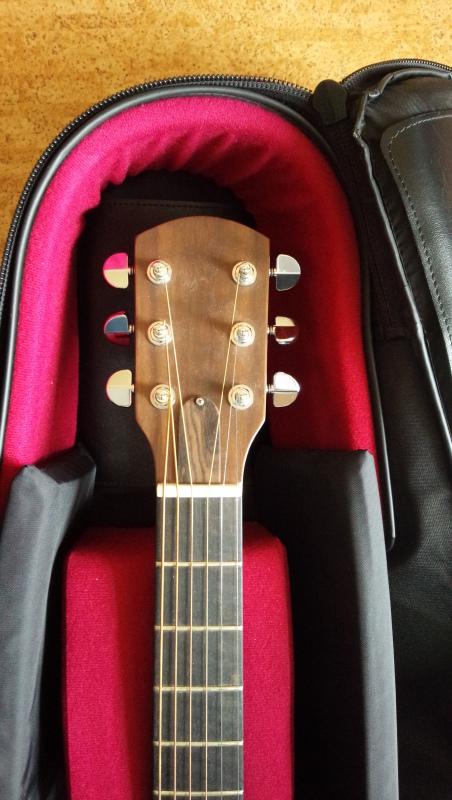 自作ギターに思うこと。_f0364521_19163241.jpg