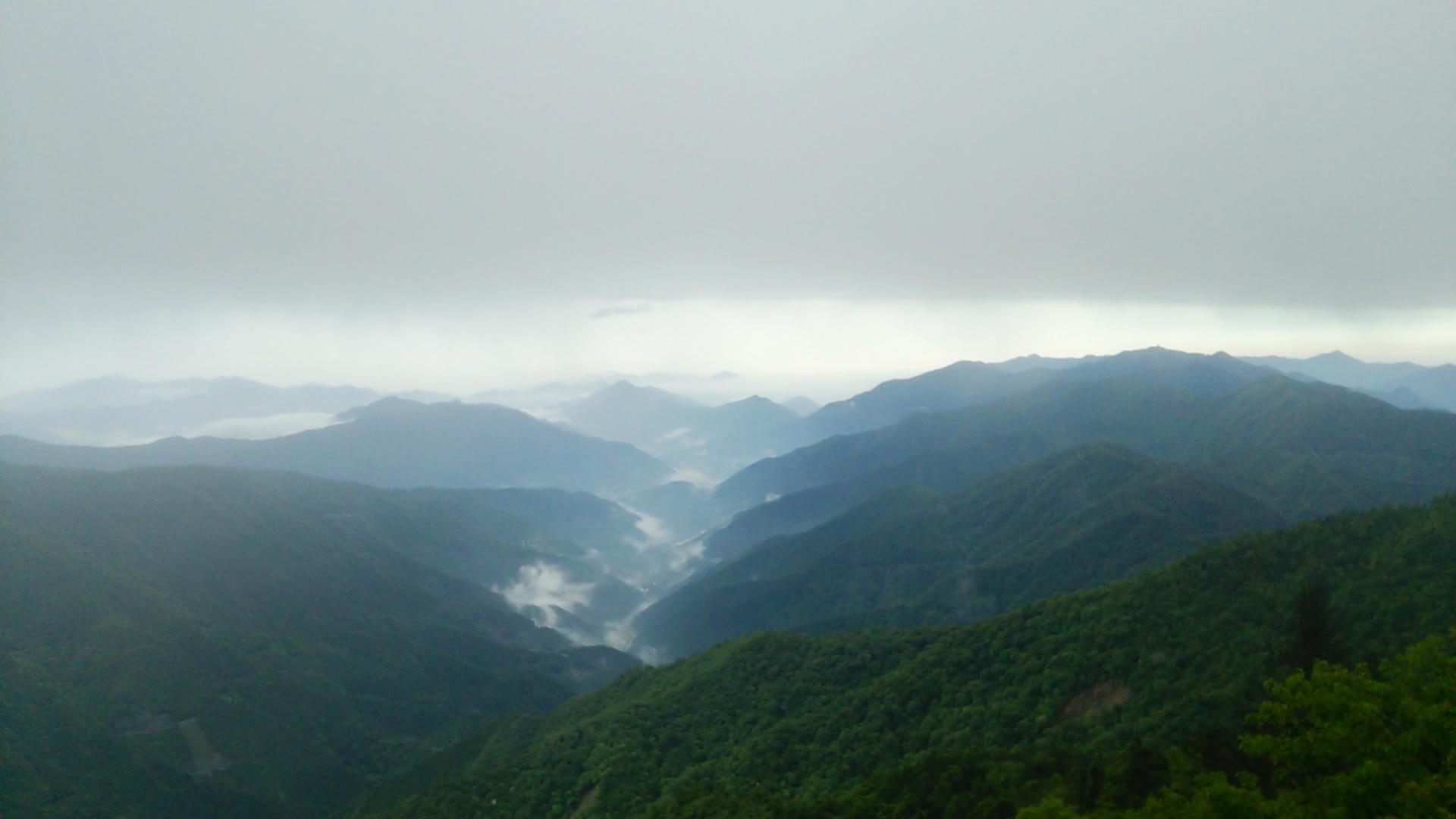6月19日 朝の気温13℃。小雨?霧雨?_c0089831_6135413.jpg