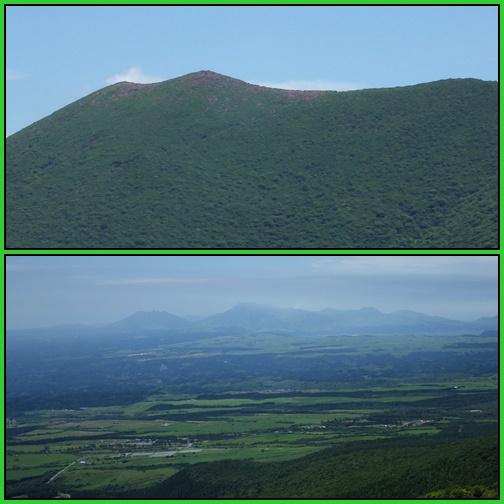 鳴子山のオオヤマレンゲ_e0164643_21244629.jpg