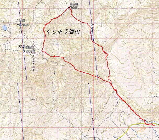鳴子山のオオヤマレンゲ_e0164643_22162535.jpg