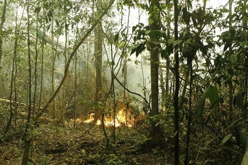 消火活動中の様子_d0135210_23274586.jpg