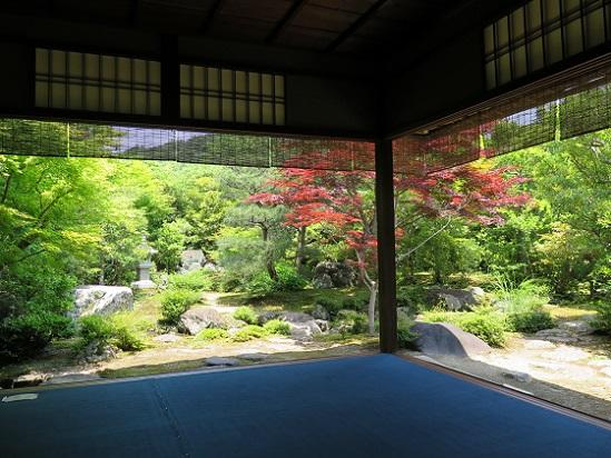 洛北、上賀茂神社界隈_c0192215_11282688.jpg