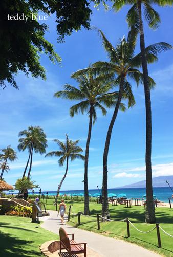 from Kaanapali, Maui  マウイ島 カアナパリ_e0253364_10201232.jpg