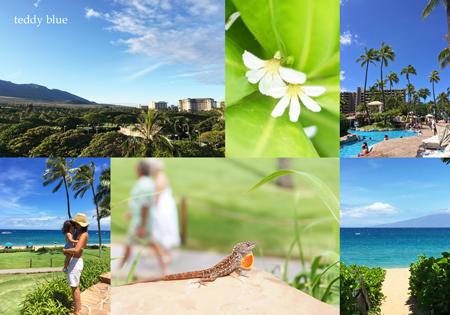 from Kaanapali, Maui  マウイ島 カアナパリ_e0253364_10374335.jpg