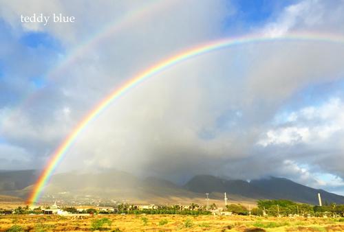 Olowalu, Maui   マウイ島 オロワル_e0253364_1235026.jpg