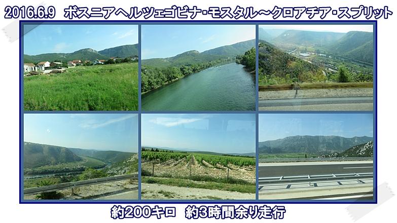 a0052666_030106.jpg