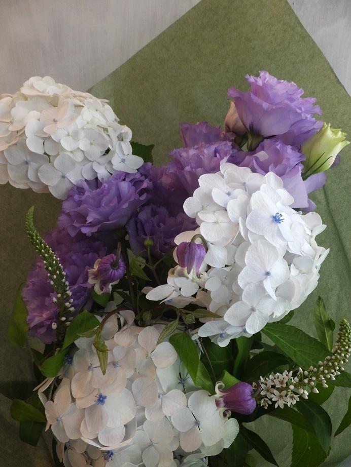 オークリーフ(父の日に贈る花)_f0049672_1739566.jpg