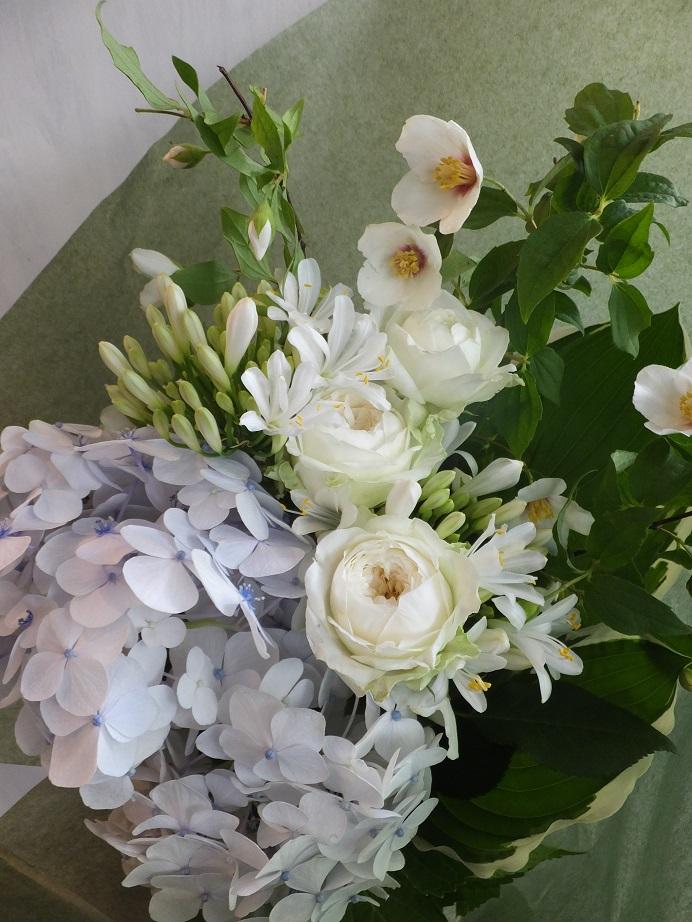 オークリーフ(父の日に贈る花)_f0049672_17402434.jpg