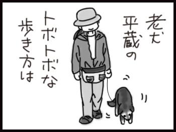 平蔵の歩き_b0057675_10522898.jpg
