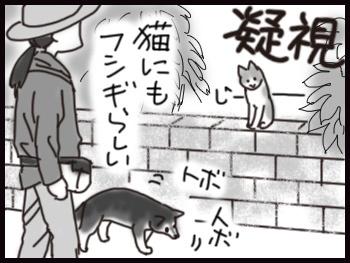 平蔵の歩き_b0057675_10524147.jpg