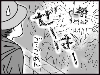 平蔵の歩き_b0057675_10533929.jpg