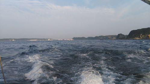 松輪サバを泳がせて・・・_f0033986_16313264.jpg