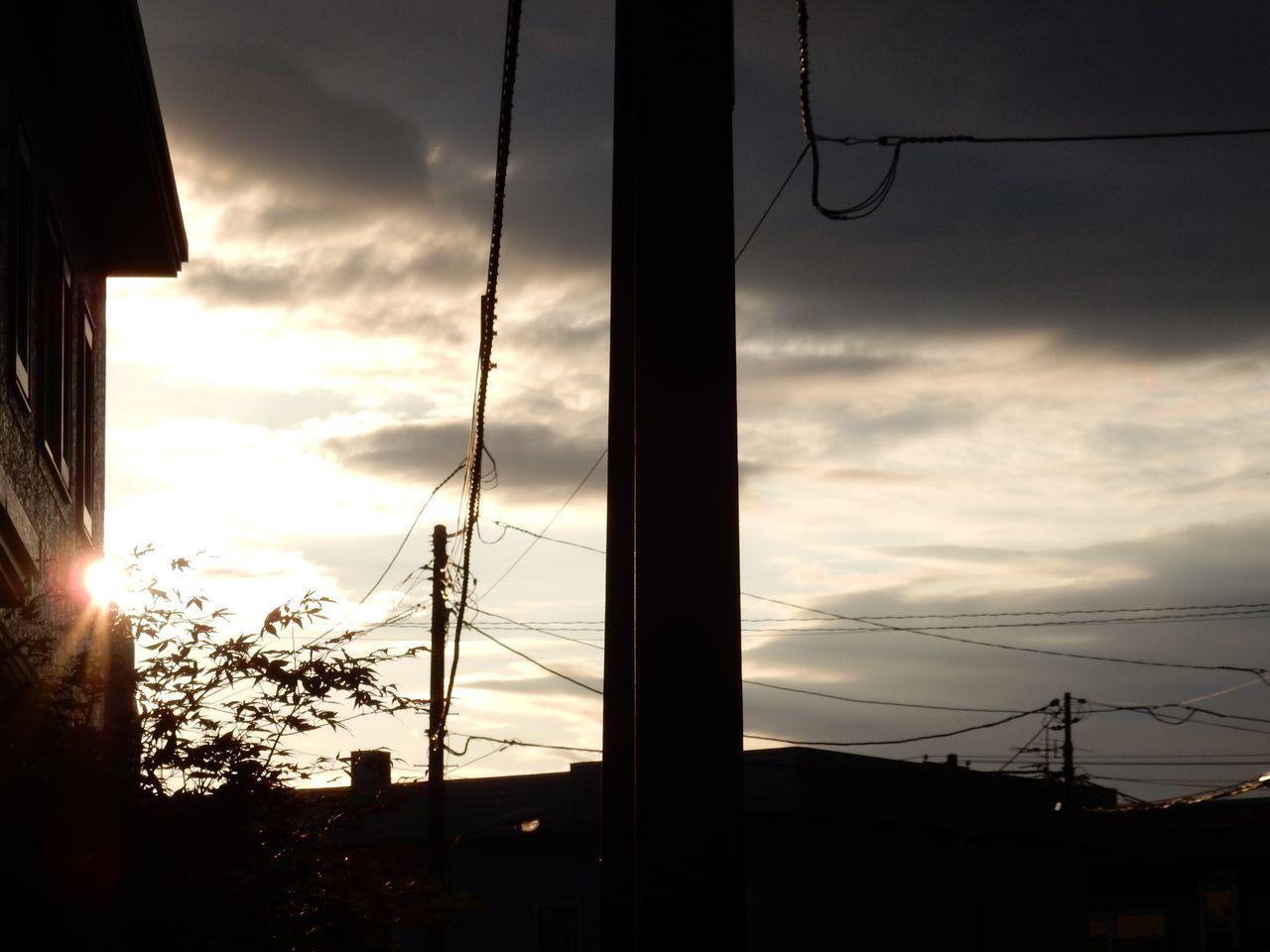 夏至 晴れ 2週間ぶりの25℃ 1日遅れのストロベリームーン_c0025115_22075577.jpg