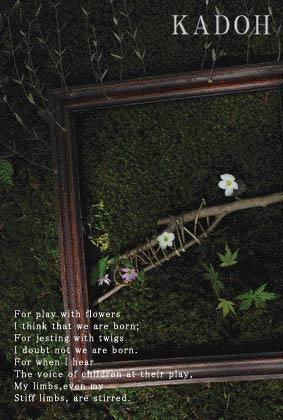 KADOH  ━ 木、草、花に遊ぶ ━_a0260022_0274092.jpg
